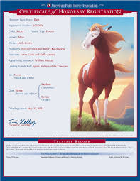 rain spirit stallion of the cimarron wiki fandom powered by wikia