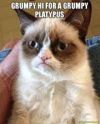 Platypus Meme - grumpy hi for a grumpy platypus make a meme
