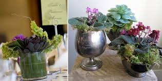 succulent centerpieces succulents a green alternative to cut flowers