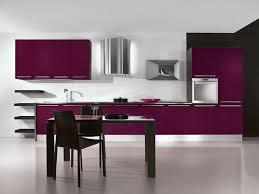 Purple Kitchen Designs Kitchen Design Stunning Open Plan Purple Kitchen Cabinets With