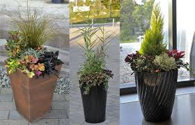Winter Container Garden Ideas Winter Gardens Brighter