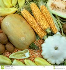 green and yellow colored vegetables composition stock photo