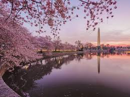 6 of the most gorgeous spring destinations in the u s