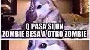 Memes En Espa Ol - memes random español google