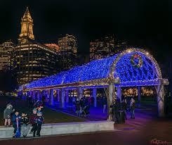 trellis lighting draws thousands to columbus park on