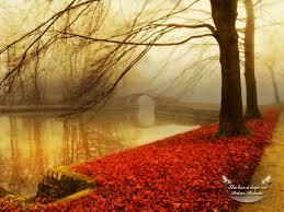fall wallpaper 1024x768 36897