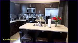 new kitchens ideas new kitchen ideas with black cabinets home design ideas picture