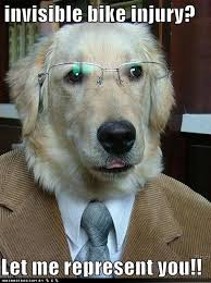 Law Dog Meme - oh so this is how i could combine my animal law practice with my