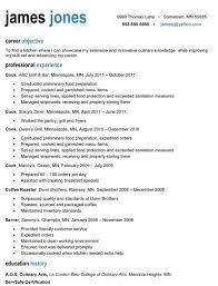 Culinary Resume Sample Free Resume Template Microsoft Word Professional Resume Template