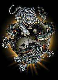 ying yang tiger picture dragons tiger