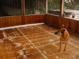Floor Painting Ideas Wood How To Paint A Plywood Subfloor Plywood Subfloor Plywood And