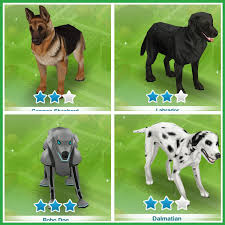 Home Design Story Dog Bone by The Sims Freeplay Guide To Pets The Who Games