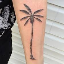 30 superb palm tree designs and meaning superb palm tree