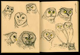 owl sketches 03 by cre8tivemarks on deviantart
