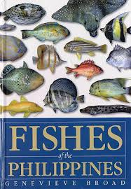 fishes of the philippines a guide to identification of families