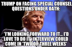 Meme Questions - trump looking forward to special counsel questions memenews