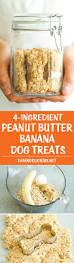 Diy Dog And Cat Treats by Download Easy Cat Treat Recipes Food Photos
