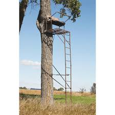 api 18 ultra steel 2 person deluxe ladder tree stand