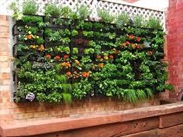 pallet garden diy pallet vertical garden wooden pallet garden