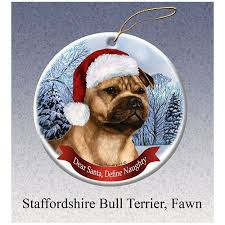 15 best staffordshire bull terriers staffordshire bull terrier