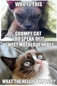 Sweet Meme - sweet mother funny memes