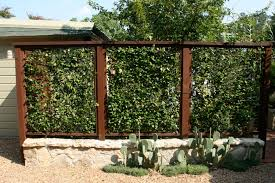 fence backyard ideas outdoor natural fencing ideas 010 natural fencing ideas that