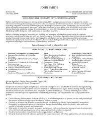 Vp Of Sales Resume Examples by Executive Sales Vp Resume
