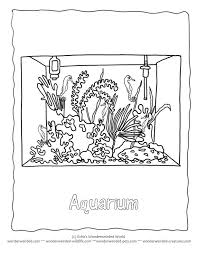 aquarium coloring page 122 best 3 animal coloring pages images on pinterest colouring