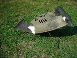 types of waterfowl layout blinds decoy pro