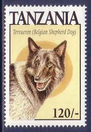 belgian tervuren 101 belgian tervuren dogs tanzania mnh stamp belgian tervuren and