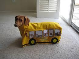 Weiner Dog Halloween Costumes Bus Dachshund Hayley Bettilyon U0026 Suzanne Bettilyon