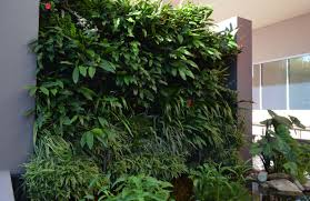 water features and vertical gardens laguna apartments toowoomba