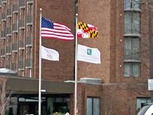 flag of maryland wikipedia