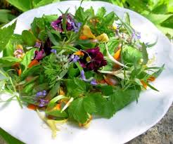 Salad With Edible Flowers - april herbs on saturday win a cooking with edible flowers book