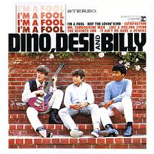 a talent for idleness adventures in liner notes dino desi and