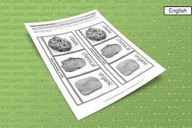 types of rocks pockets dinah