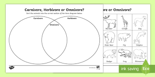 carnivore or herbivore venn diagram sorting worksheet