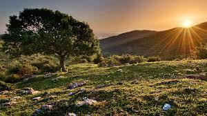 Mountain Landscaping Ideas Download Picture Landscape Garden Design