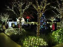 christmas florida botanical gardens in largo fl youtube