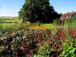 country garden hampshire helen sales garden design
