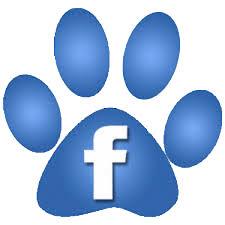 facebook icon animal rescue adopt a pet