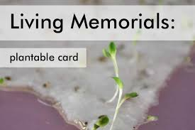 memorial ideas 11 living memorial ideas to honor a loved one