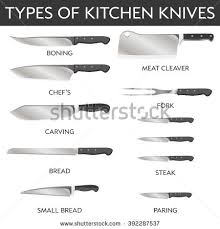 kitchen knives names vector illustration types kitchen knives stock vector