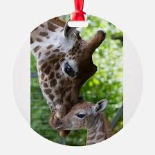 giraffe ornament cafepress