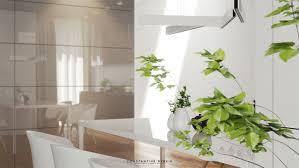 coolest desk plants hostgarcia
