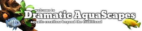 Aquascapes Com Dramatic Aquascapes Diy Aquarium Backgrounds