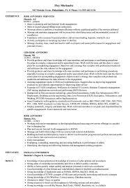 resume template financial accountants definition of terrorism risk advisory resume sles velvet jobs