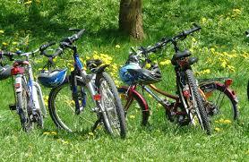fall color festival bike rides john muir trails