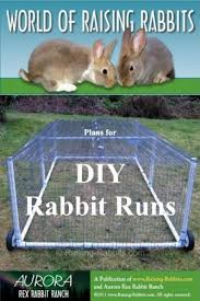 Plans For Building A Rabbit Hutch Outdoor Best 25 Rabbit Run Ideas On Pinterest Outdoor Rabbit Hutch