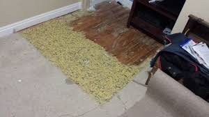Under Padding For Laminate Flooring Found Hardwood Floors Under My Carpet In Bad Shape Album On Imgur